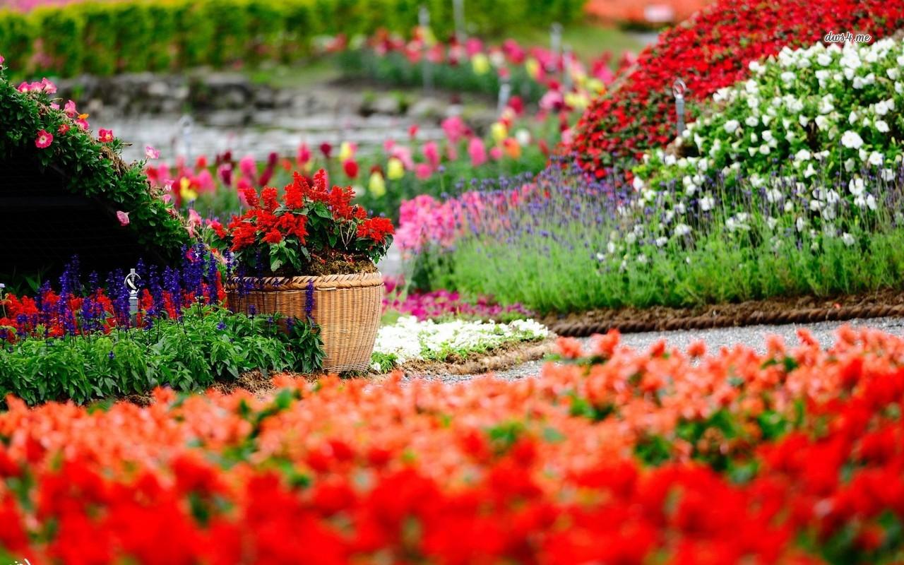 بالصور صور حدائق جميله , روعة التصميم والتنسيق 3257 6