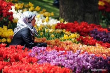 بالصور صور حدائق جميله , روعة التصميم والتنسيق 3257 7