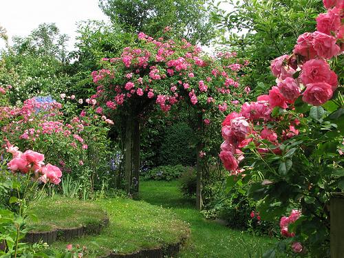 صور حدائق جميله , روعة التصميم والتنسيق