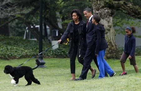 بالصور كلب حراسة اوباما , شراسة وضخامة وقوة 3264 6