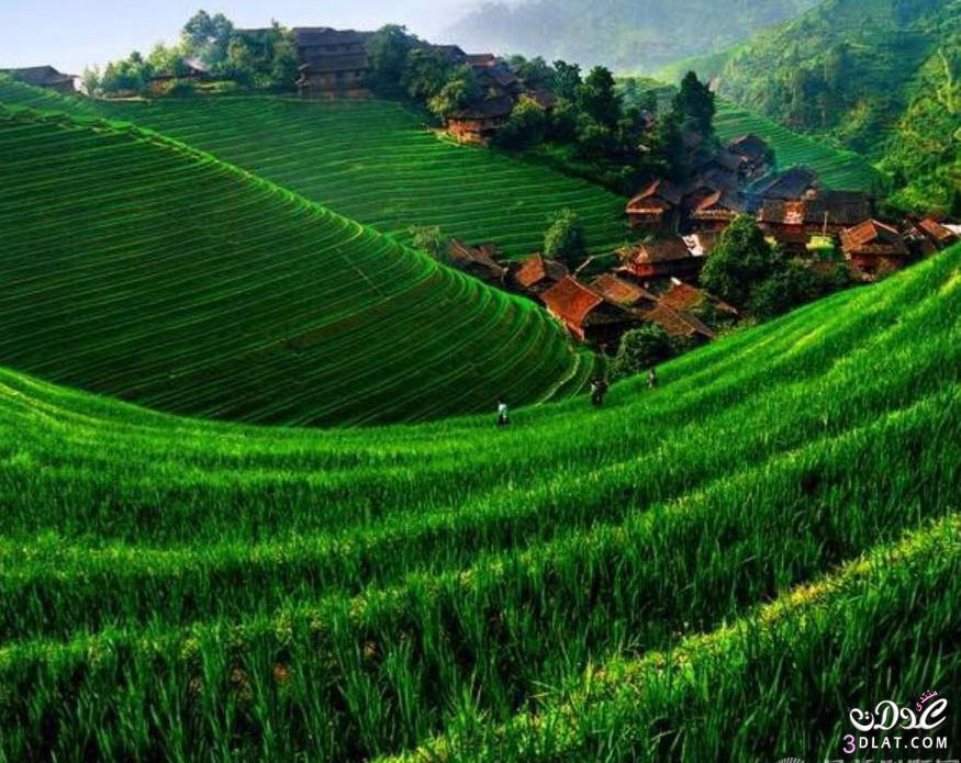 صوره مناظر طبيعية ساحرة , صور غاية في الروعة والجمال