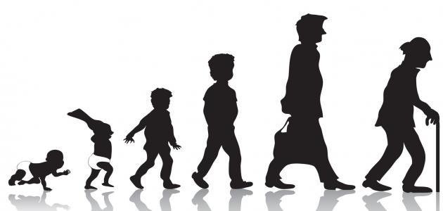 صورة مراحل حياة الرجل , ما بين الشباب و الكهولة