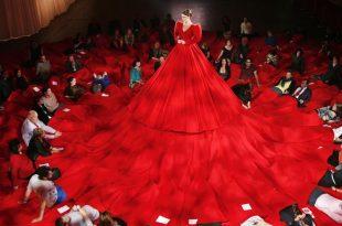 صوره اغرب فستان في العالم , يدخل موسعة جنيس