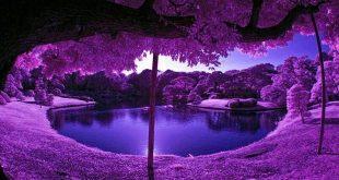 اروع صور الطبيعة , ابداع الخالق سبحان اللة