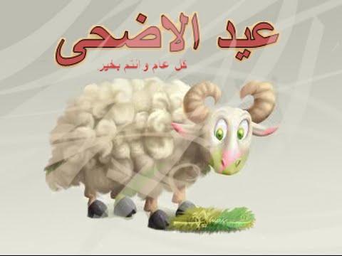 بالصور صور خروف العيد اضحك من قلبك مع صور عيد الاضحي 3677 1