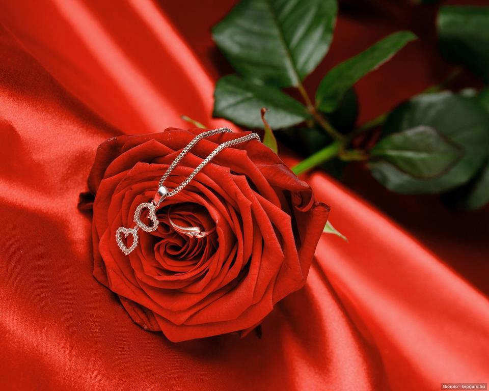 بالصور اجمل الصور الرومانسية , صور تعطي احساس بالحب الكبير 3720 4