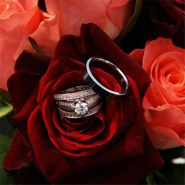 بالصور اجمل الصور الرومانسية , صور تعطي احساس بالحب الكبير 3720 7