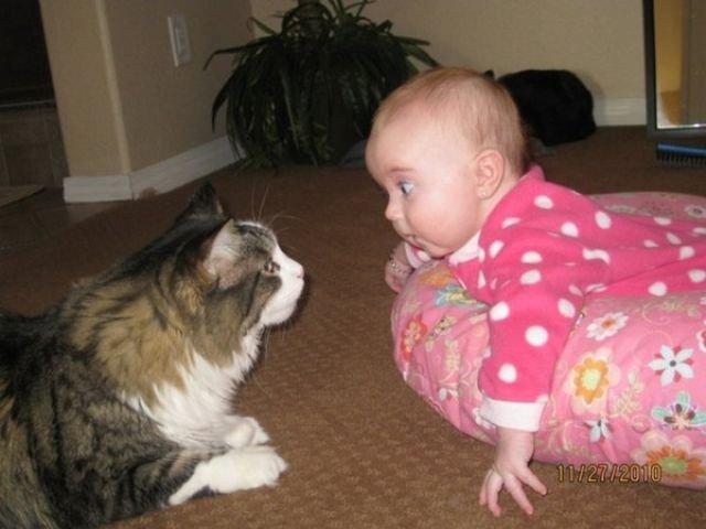 بالصور حركات اطفال مضحكة , اضحك من قلبك مع صور الاطفال 3740 5