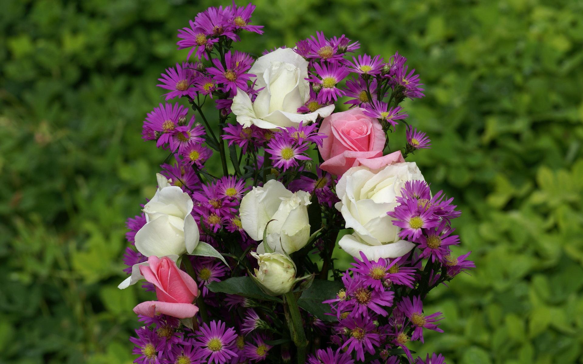 بالصور ورود من الطبيعة , اجمل صور لزهور جميلة 3752 8