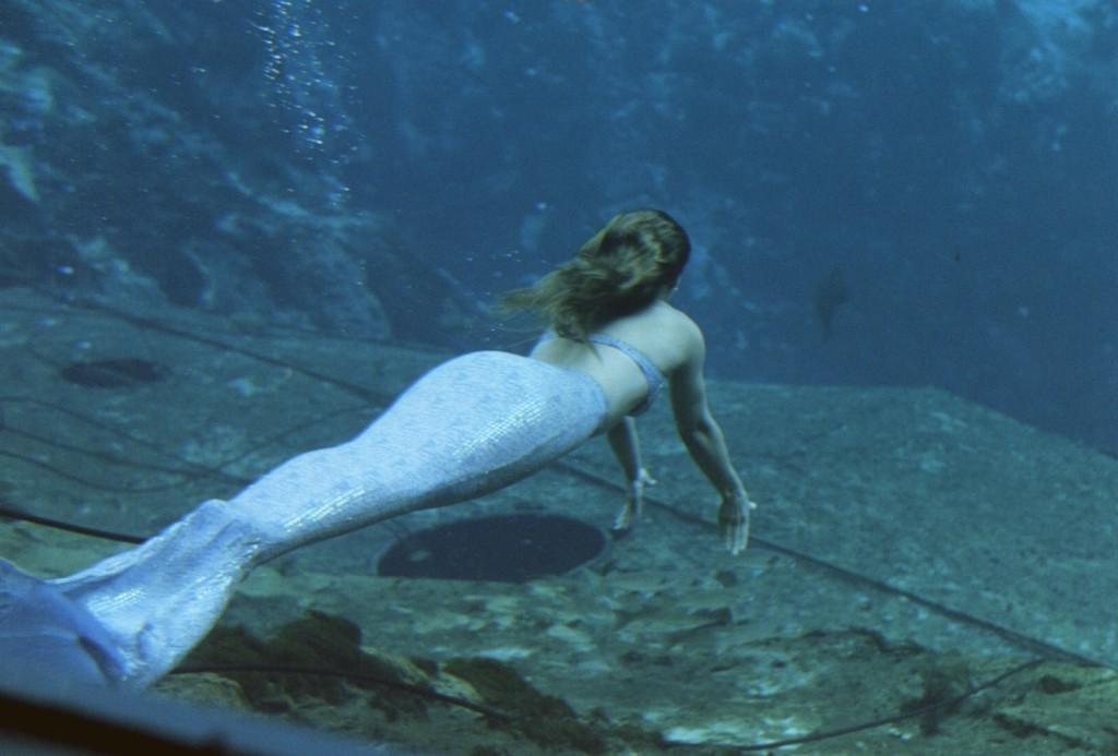 صوره صور عروسة البحر , صور من اشهر قصص الاطفال