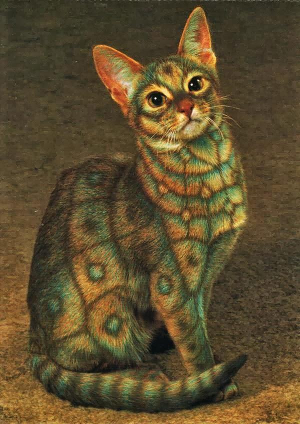بالصور الرسم على القطط , اليكم ياعشاق الحيوانات 3778 1