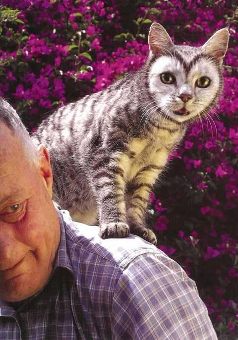 بالصور الرسم على القطط , اليكم ياعشاق الحيوانات 3778 4