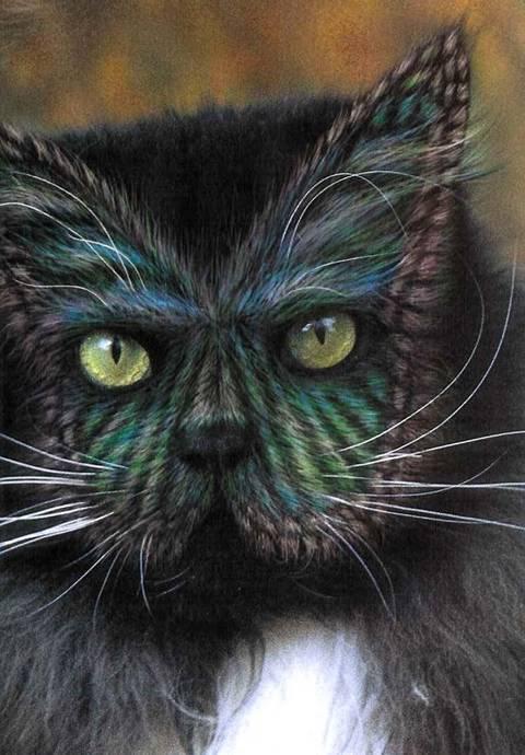 بالصور الرسم على القطط , اليكم ياعشاق الحيوانات 3778 9