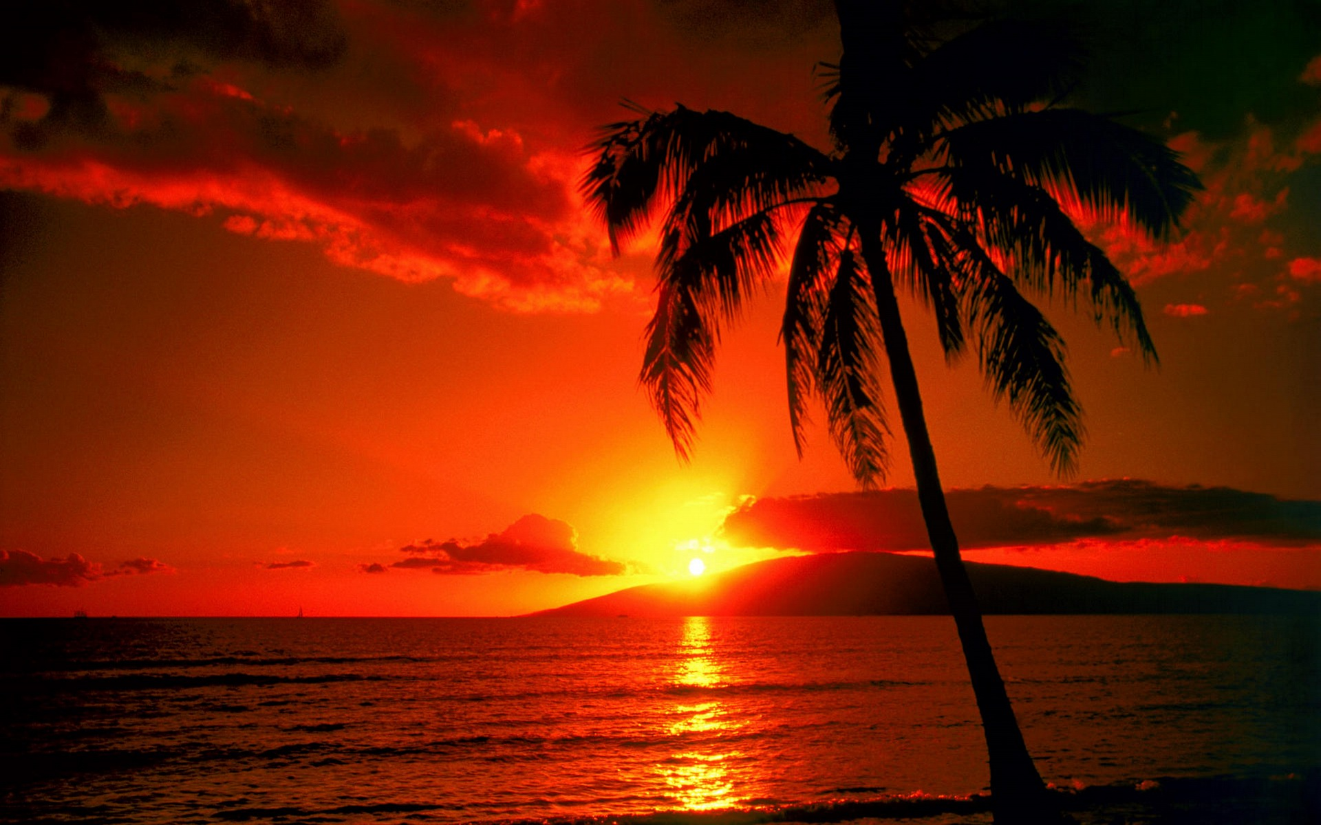بالصور جمال غروب الشمس , من اجمل المناظر الطبيعية 3849 4