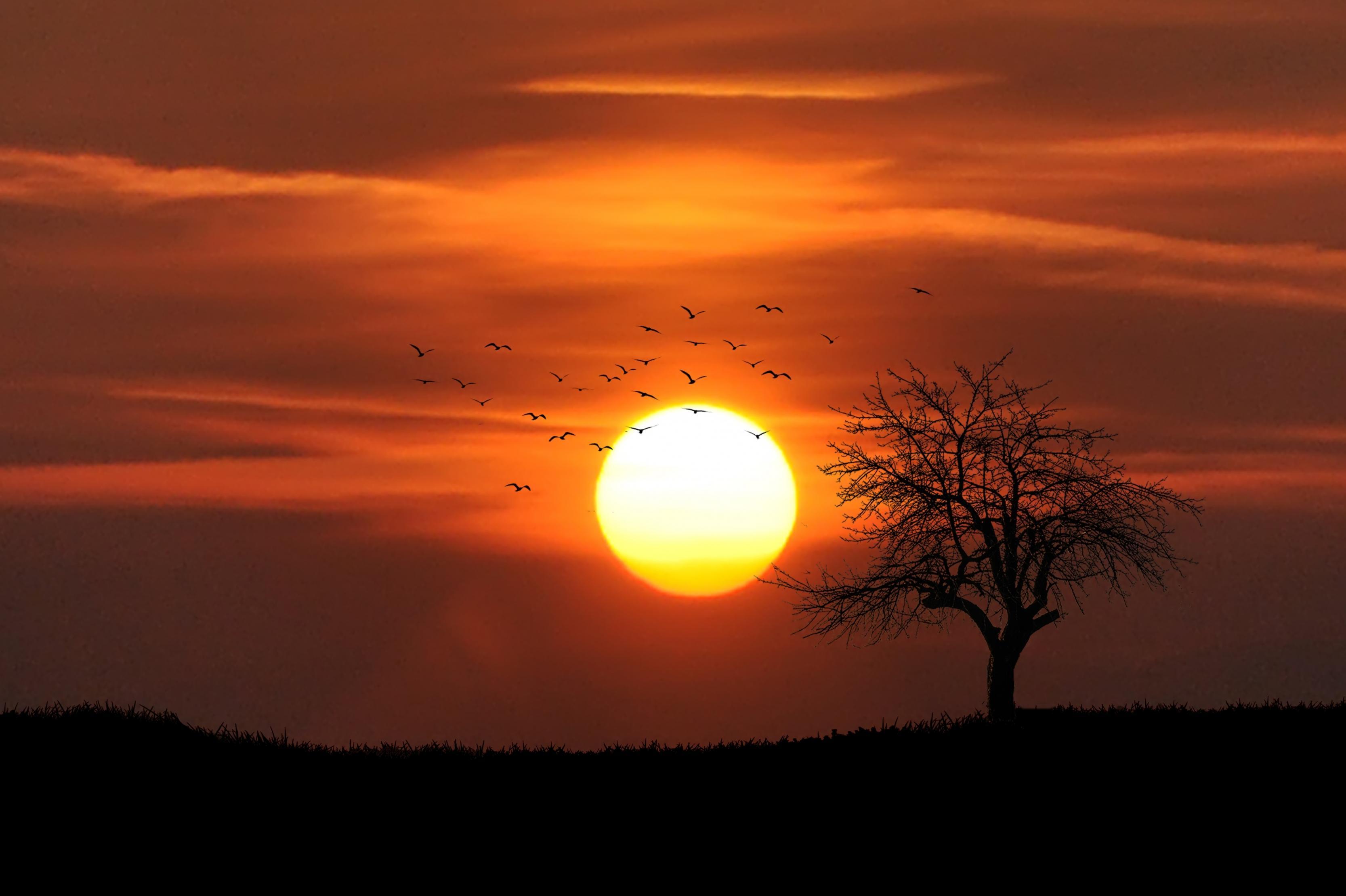 بالصور جمال غروب الشمس , من اجمل المناظر الطبيعية 3849 5