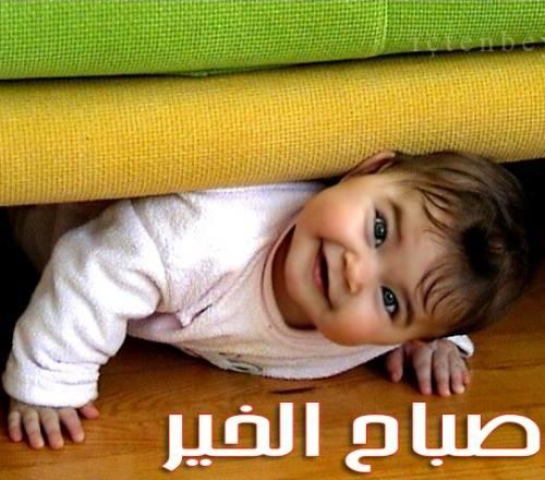 صوره صور صباحية مضحكة , اضحك من قلبك مع كل صباح