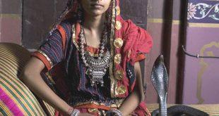 بالصور هنديه تتزوج من ثعبان , بعد ان وقعت فى غرامة 4157 9 310x165