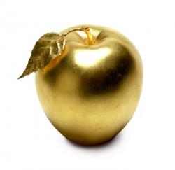 اشياء من الذهب , تخطف الانظار من روعة جمالها