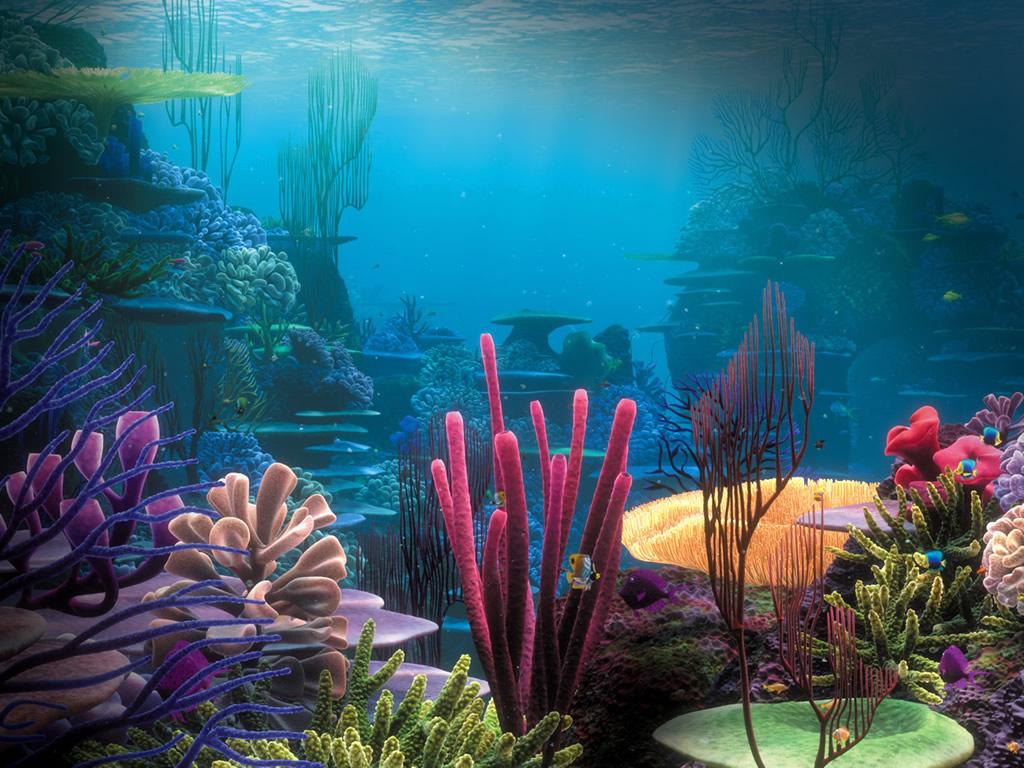 صور من عالم البحار , صور رائعة فى عالم البحار غريبة ومدهشة جدا
