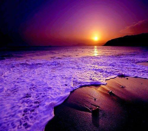 صورة جمال اللون البنفسجي , من اروع الالوان التى تساعد على تهدئه الاعصاب