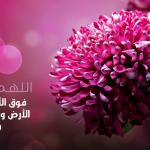 خلفيات اسلاميه جميله جدا , اروع الخلفيات الدينيه
