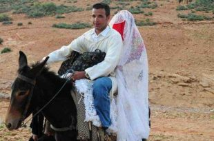 صوره زواج اخر زمن , تقاليع غريبة وعجيبة