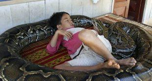 صوره طفل يلعب مع ثعبان , صور مروعة تثير الرهبة في القلوب