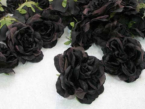 صوره الورد الاسود من الغرائب , ظاهرة نادرة في فيتنام