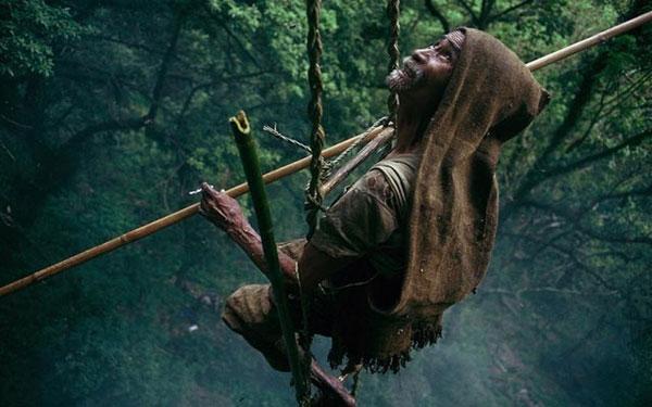 صوره جني العسل في جبال الهملايا , طرق تقليدية ومغامرة غريبة