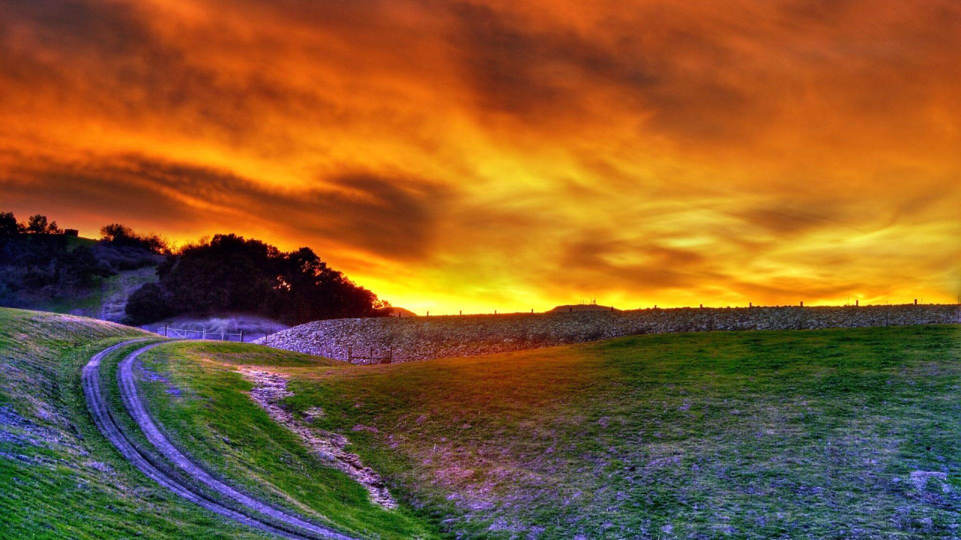 بالصور صور طبيعة جميلة , احلى خلفيات اشجار وسماء وبحار روعه 3981 1