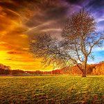صور طبيعة جميلة , احلى خلفيات اشجار وسماء وبحار روعه