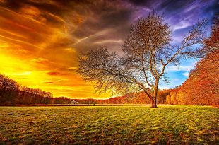 صور صور طبيعة جميلة , احلى خلفيات اشجار وسماء وبحار روعه