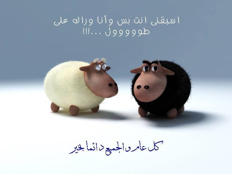 بالصور كاريكاتير عن عيد الاضحى , اجمل بوستات تعيد علي حبايبك بيها 3987 4