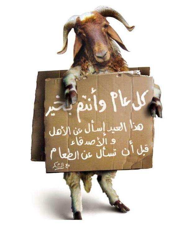 بالصور كاريكاتير عن عيد الاضحى , اجمل بوستات تعيد علي حبايبك بيها 3987 7