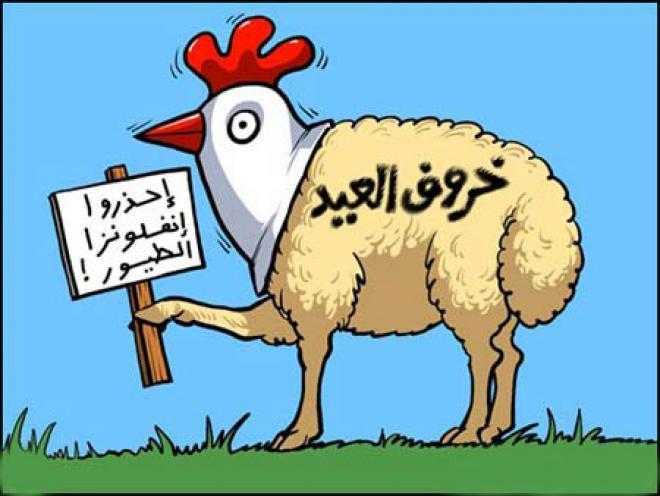 بالصور كاريكاتير عن عيد الاضحى , اجمل بوستات تعيد علي حبايبك بيها 3987 8