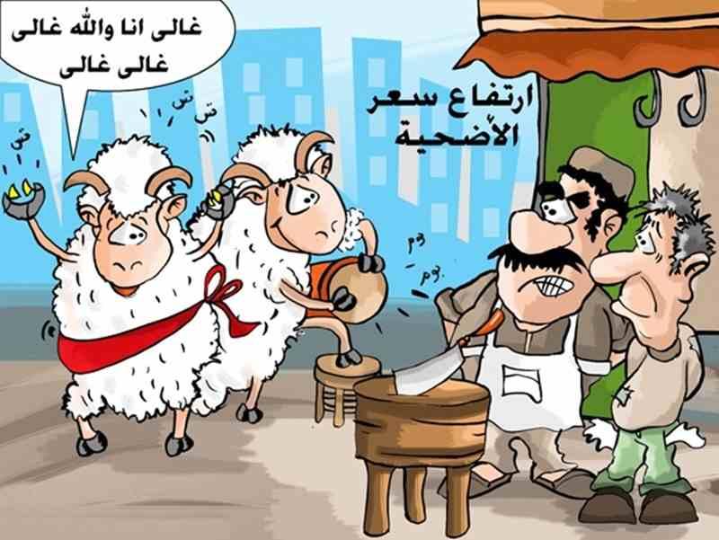 بالصور كاريكاتير عن عيد الاضحى , اجمل بوستات تعيد علي حبايبك بيها 3987