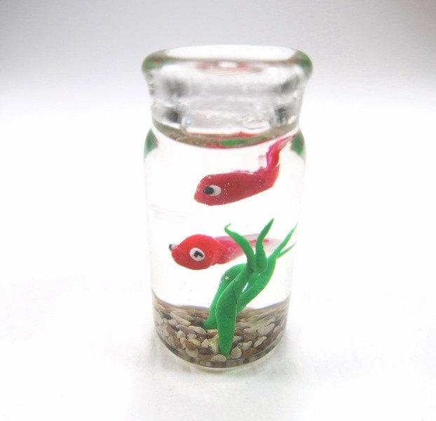 بالصور اصغر حوض سمك في العالم , لعشاق تربية الحيوانات الاليفه 3991 5