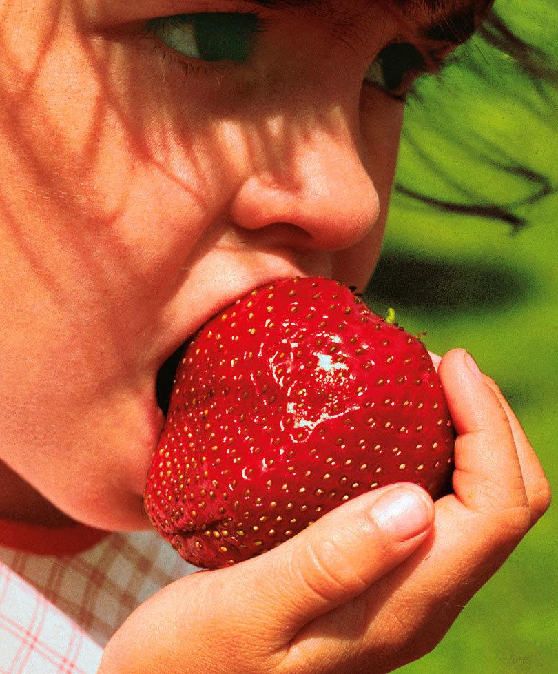 بالصور مراحل نمو الفراولة شي عجيب , الفراولة في مراحل نموها 261 9