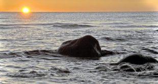 صورة اجمل مافي البحر , صور خلفيات رائعة ومذهلة