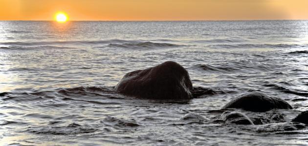 صوره اجمل مافي البحر , صور خلفيات رائعة ومذهلة