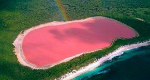 غرائب وعجائب الطبيعه , صور البحيرة الوردية في استراليا