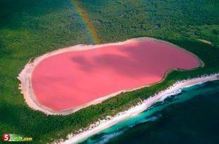 صوره غرائب وعجائب الطبيعه , صور البحيرة الوردية في استراليا