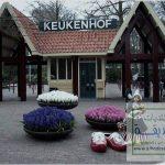 صور حديقة keukenhof , اجمل المناظر الطبيعية في هولندا