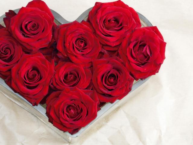 صورة صور قلوب وورود , مناظر من القلوب الرومانسية