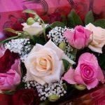 صور ورد وزهور , مناظر طبيعية والوان جميلة