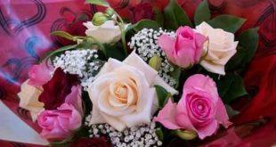 صورة صور ورد وزهور , مناظر طبيعية والوان جميلة 2721 10 310x165