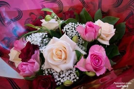 صورة صور ورد وزهور , مناظر طبيعية والوان جميلة