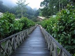 بالصور جولة سياحية في ماليزيا , مناظر طبيعية رائعة غاية في الجمال 2764 10