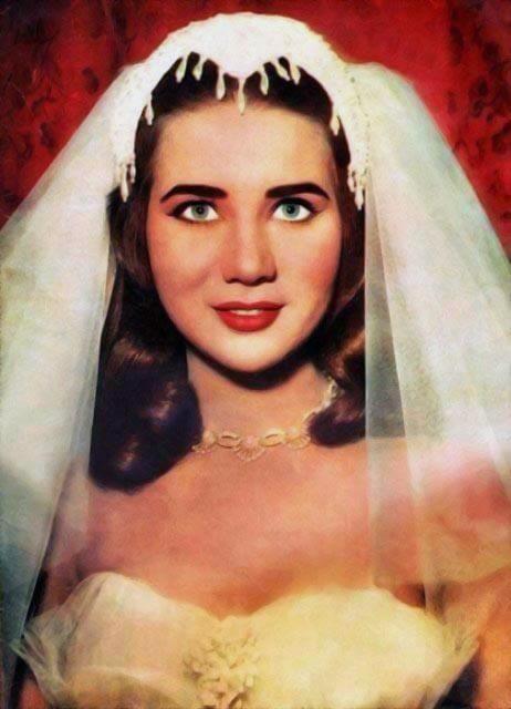 بالصور صور ملكات جمال مصر , الجمال المصري الرائع 2785 3