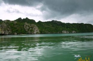 بالصور رحلتى الى ماليزيا , صور مختلفة عن الطبيعة الرائعة 4419 9 310x205
